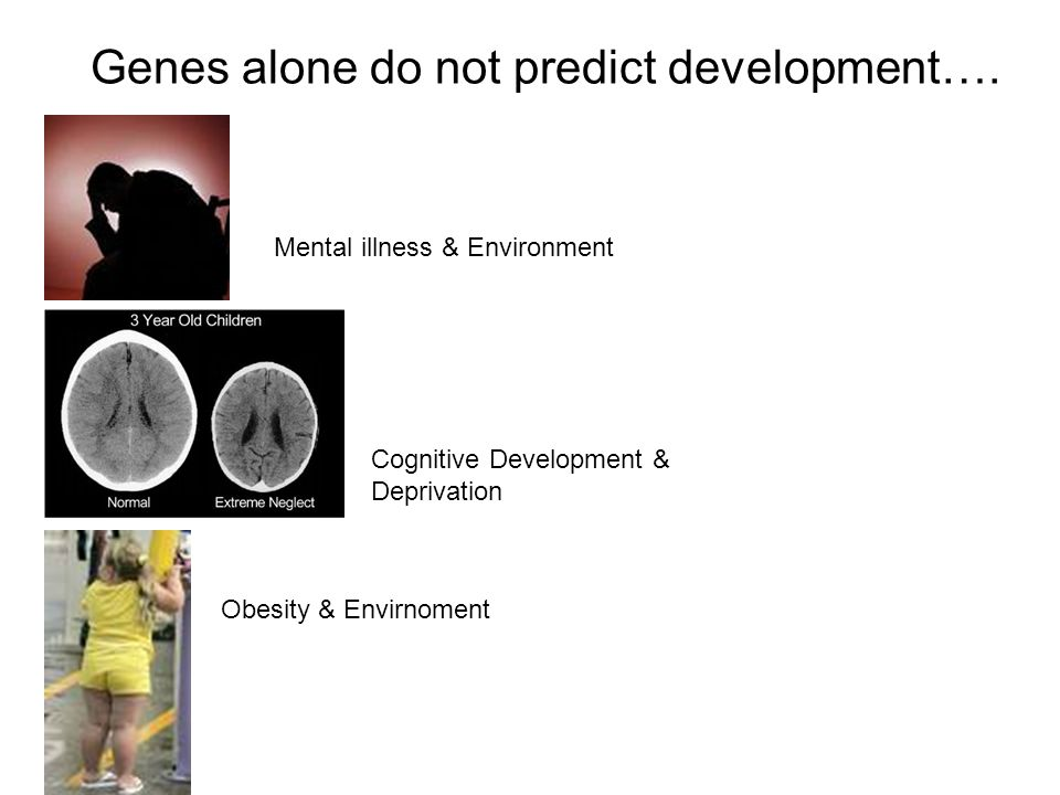 Genes alone do not predict development….