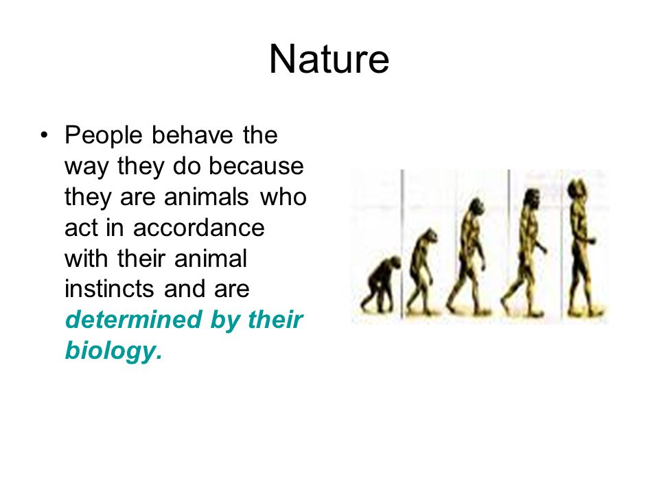 Nature People behave the way they do because they are animals who act in accordance with their animal instincts and are determined by their biology.