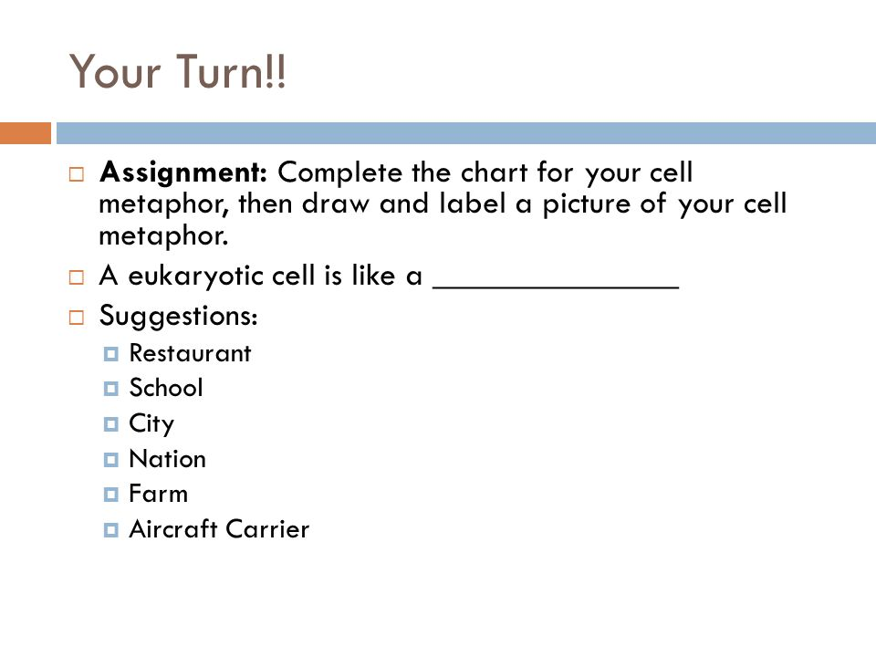 Your Turn!! Assignment: Complete the chart for your cell metaphor, then draw and label a picture of your cell metaphor.