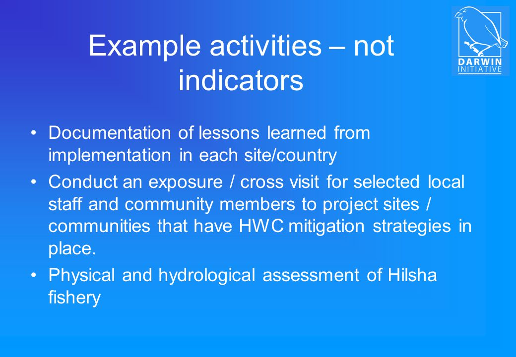Example activities – not indicators