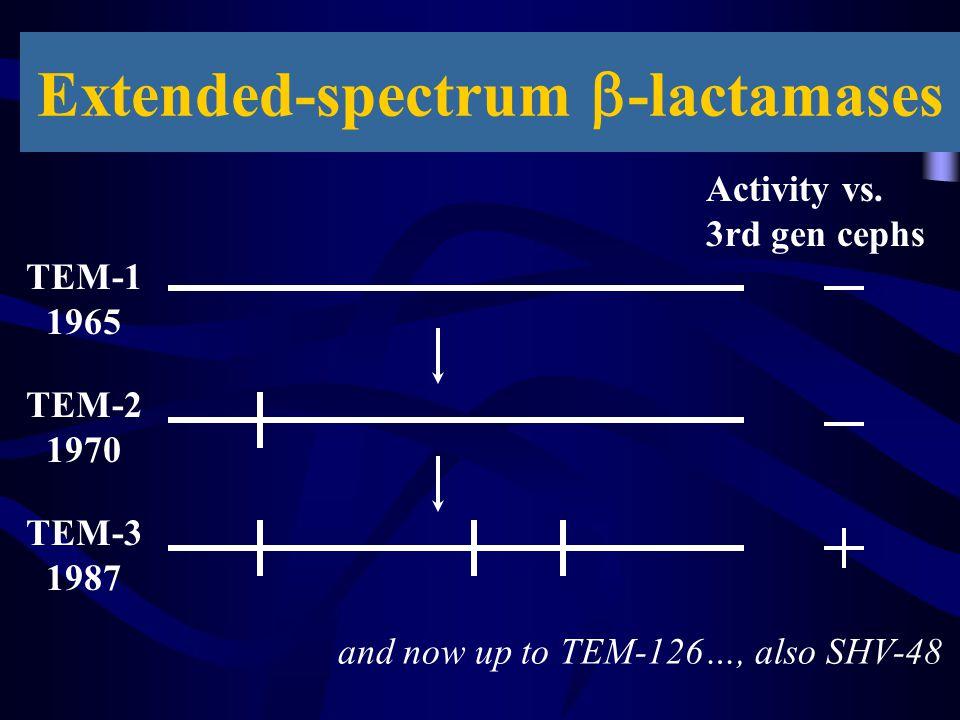 Extended-spectrum b-lactamases