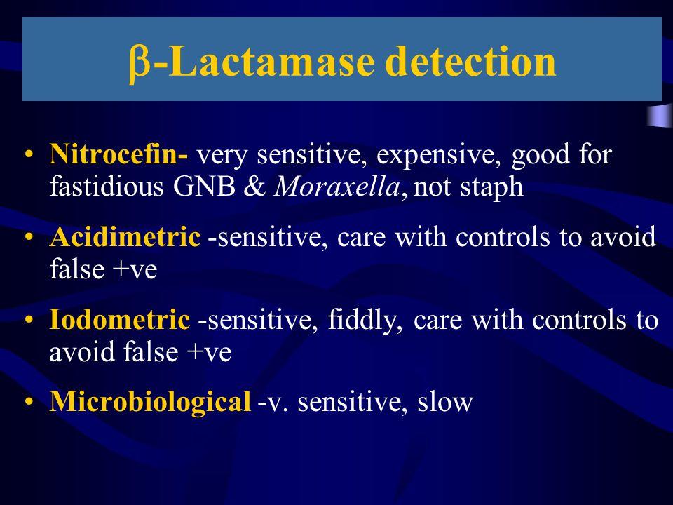 b-Lactamase detection
