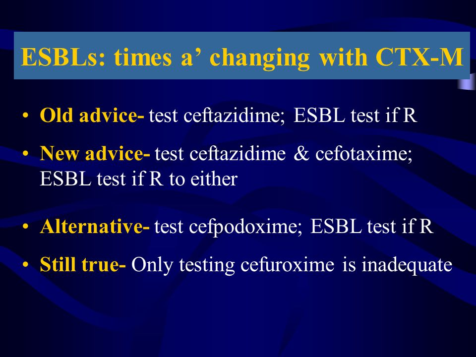 ESBLs: times a' changing with CTX-M