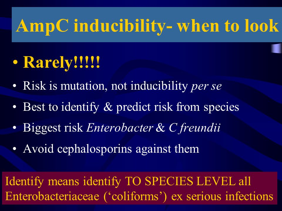 AmpC inducibility- when to look