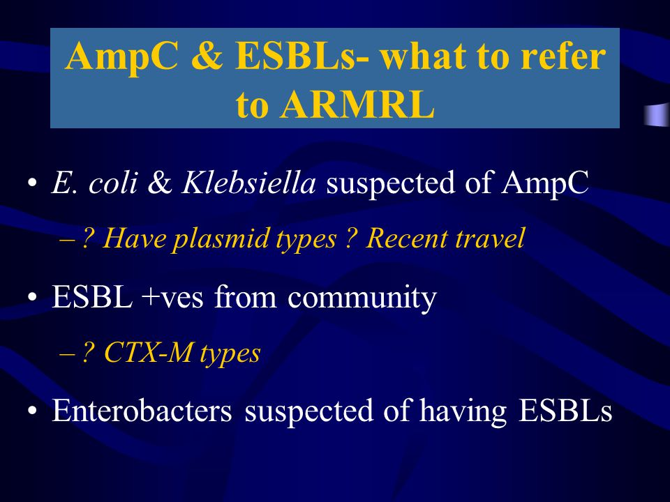 AmpC & ESBLs- what to refer to ARMRL