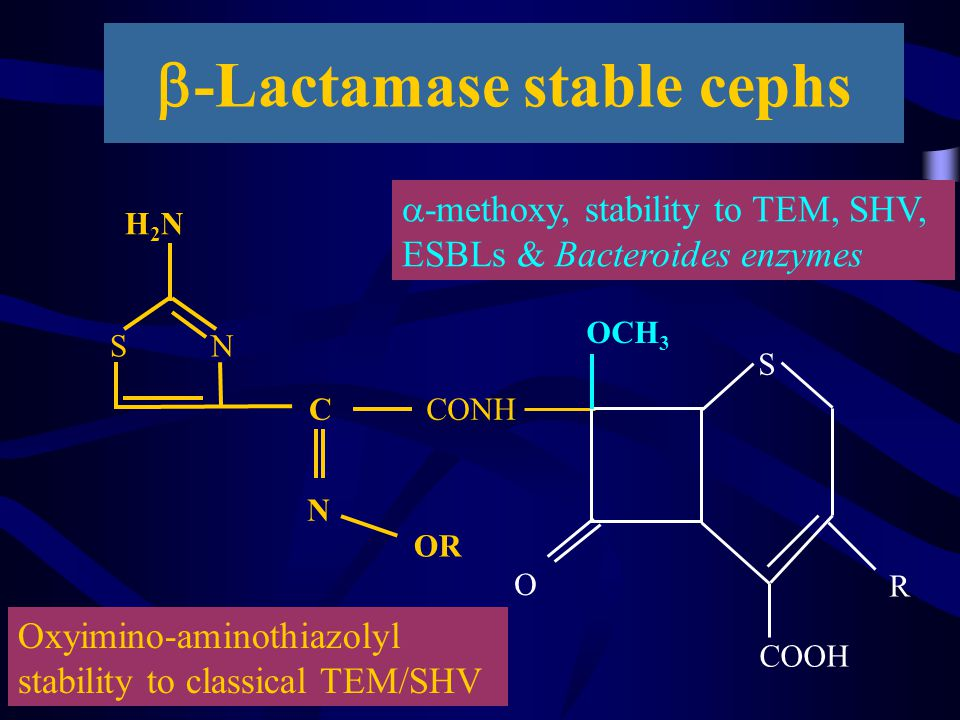 b-Lactamase stable cephs