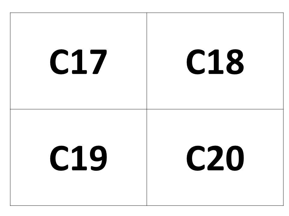 C17 C18 C19 C20