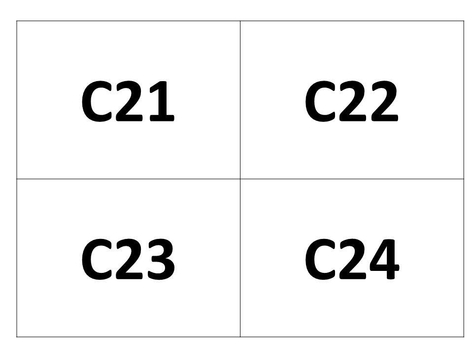 C21 C22 C23 C24
