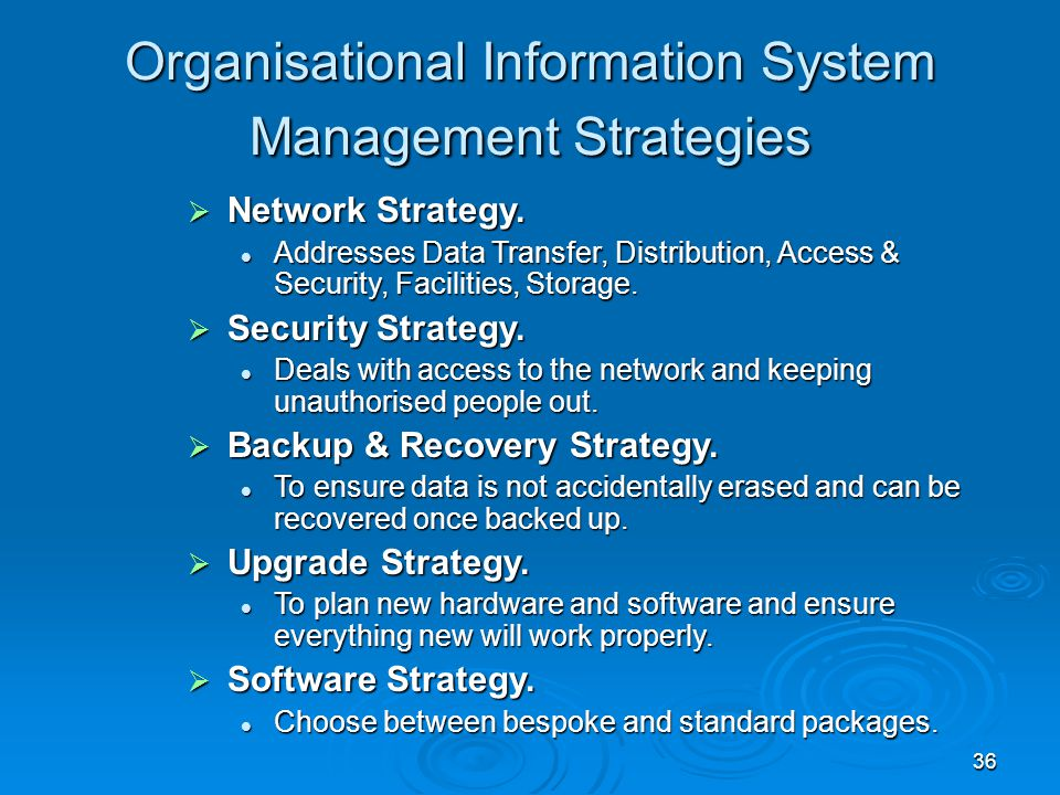 Organisational Information System Management Strategies