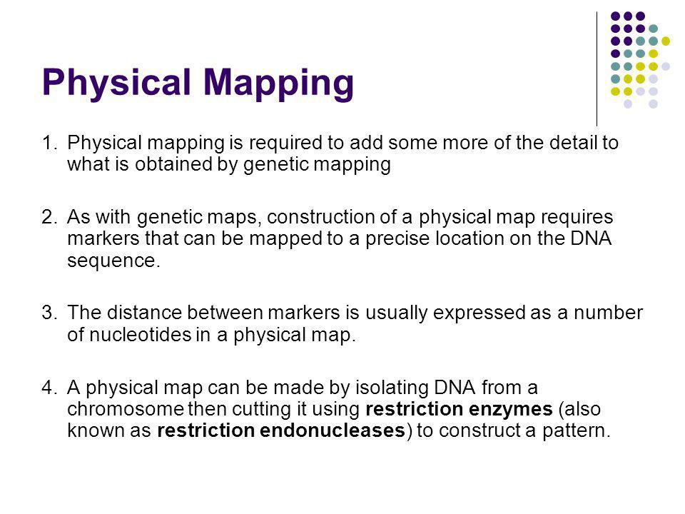 Physical Mapping 1. Physical mapping is required to add some more of the detail to what is obtained by genetic mapping.