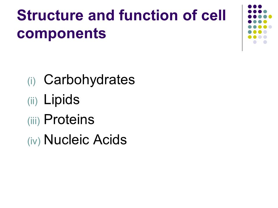 Structure and function of cell components
