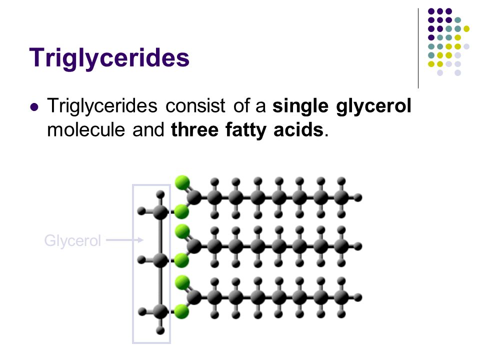 Triglycerides Triglycerides consist of a single glycerol molecule and three fatty acids. Glycerol