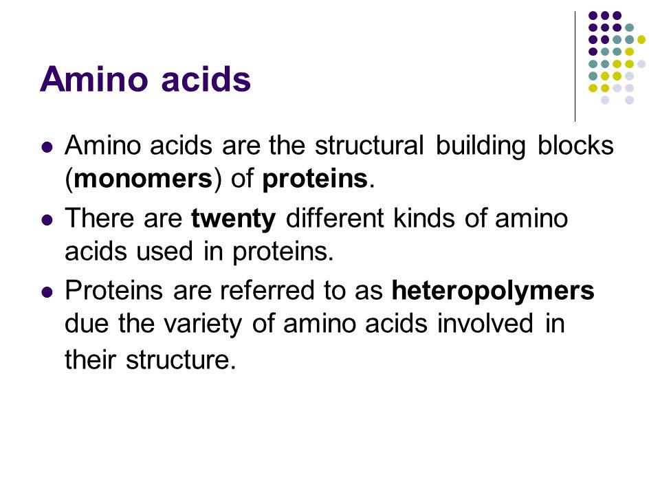 Amino acids Amino acids are the structural building blocks (monomers) of proteins. There are twenty different kinds of amino acids used in proteins.