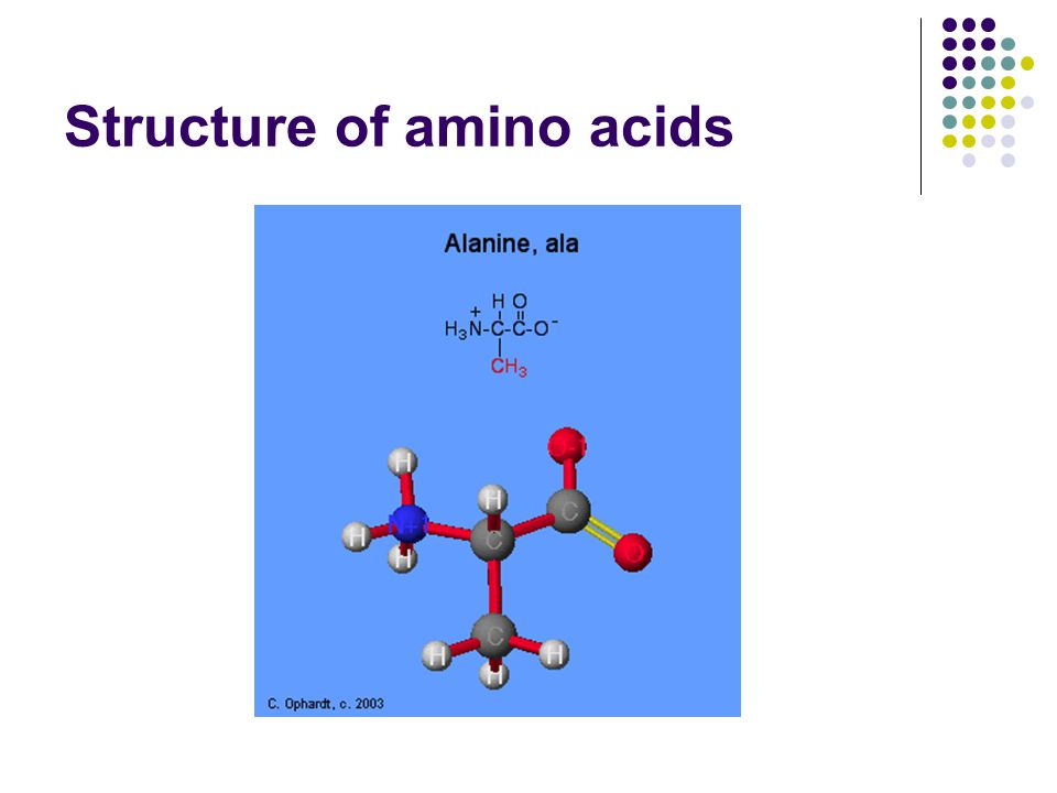 Structure of amino acids