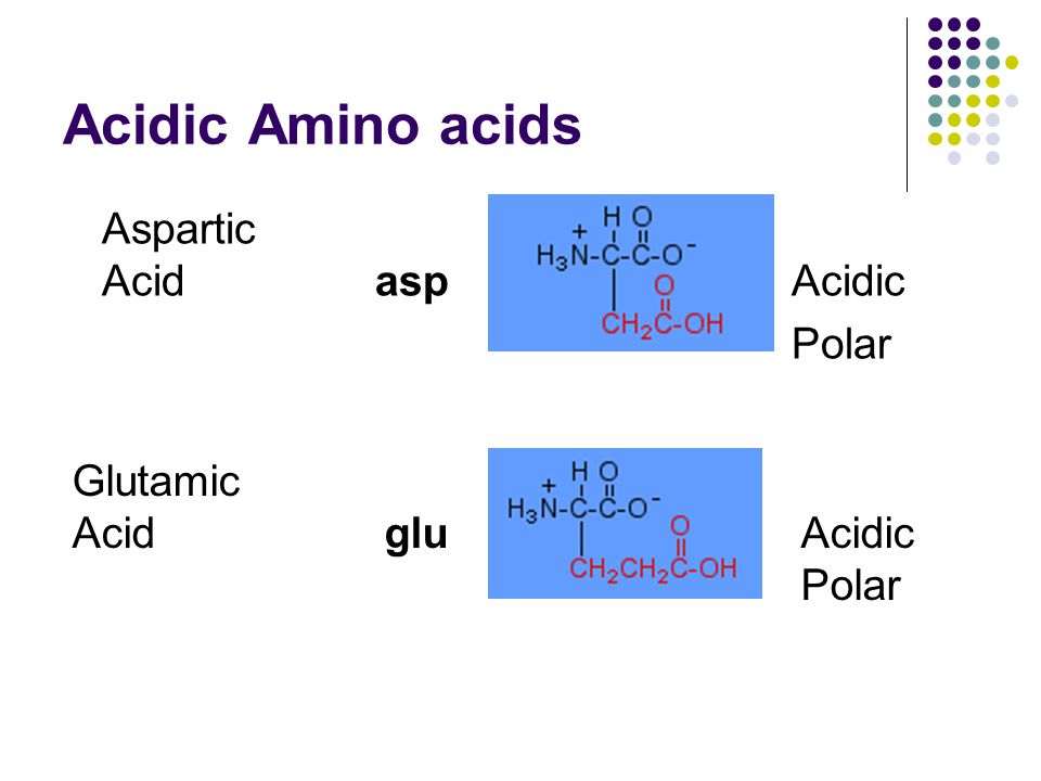 Acidic Amino acids Aspartic Acid asp Acidic Polar