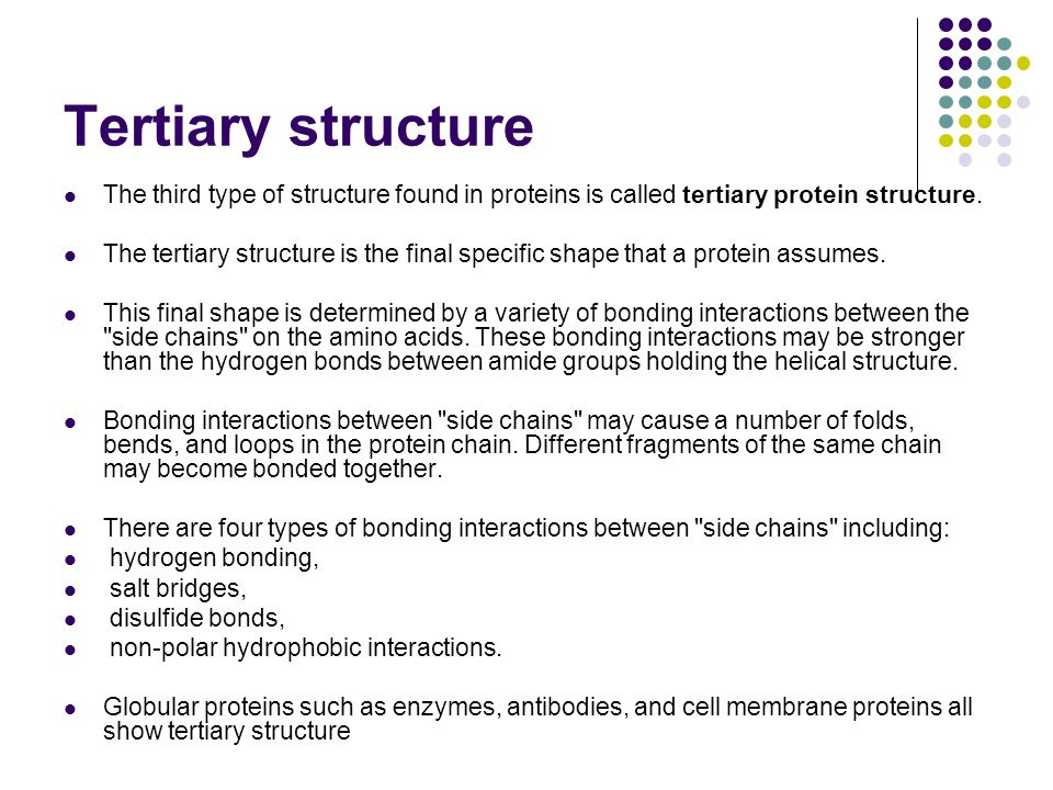 Tertiary structure The third type of structure found in proteins is called tertiary protein structure.