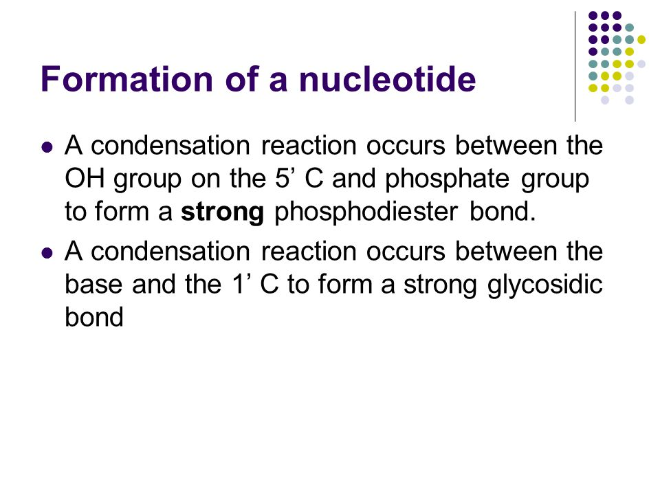 Formation of a nucleotide