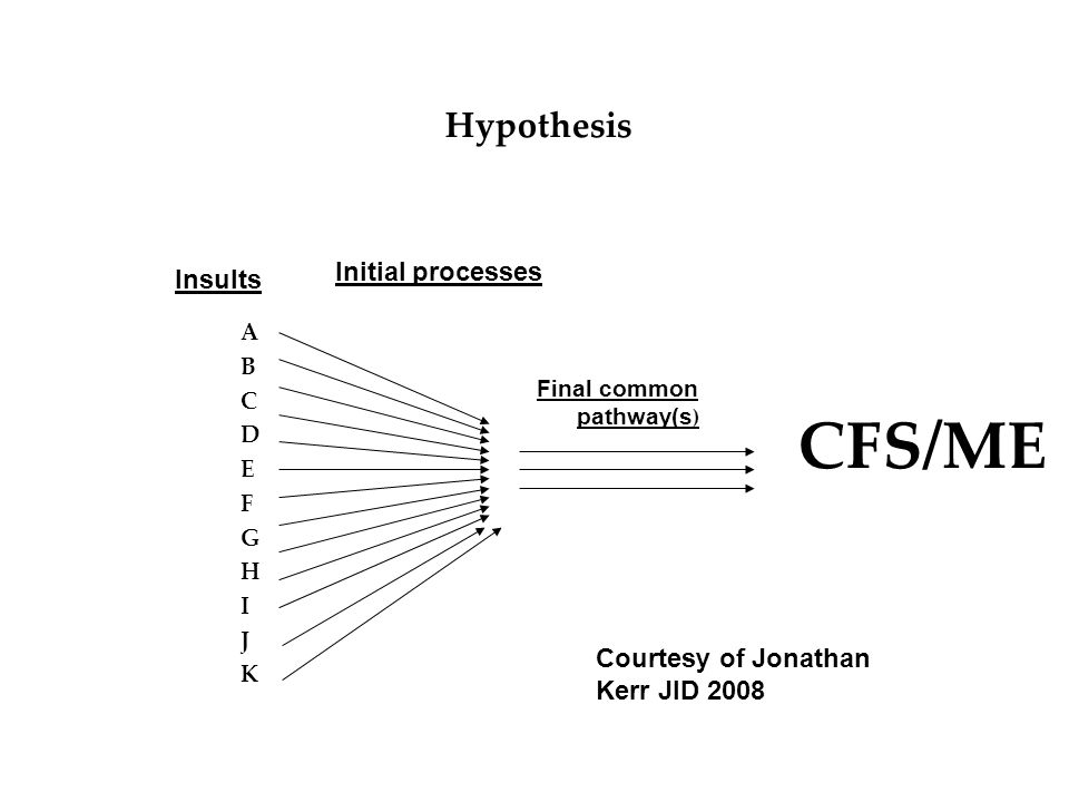 CFS/ME Hypothesis Initial processes Insults