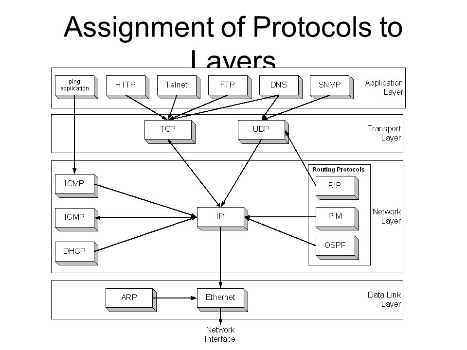 Assignment of Protocols to Layers