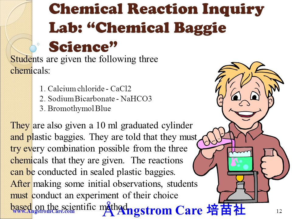 Chemical Reaction Inquiry Lab: Chemical Baggie Science