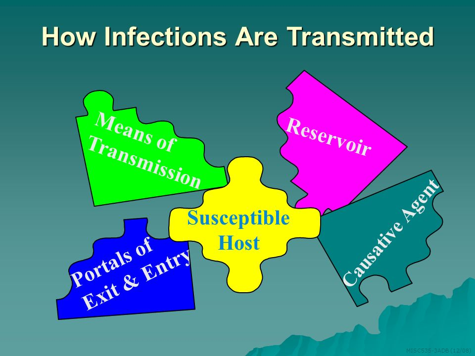 How Infections Are Transmitted