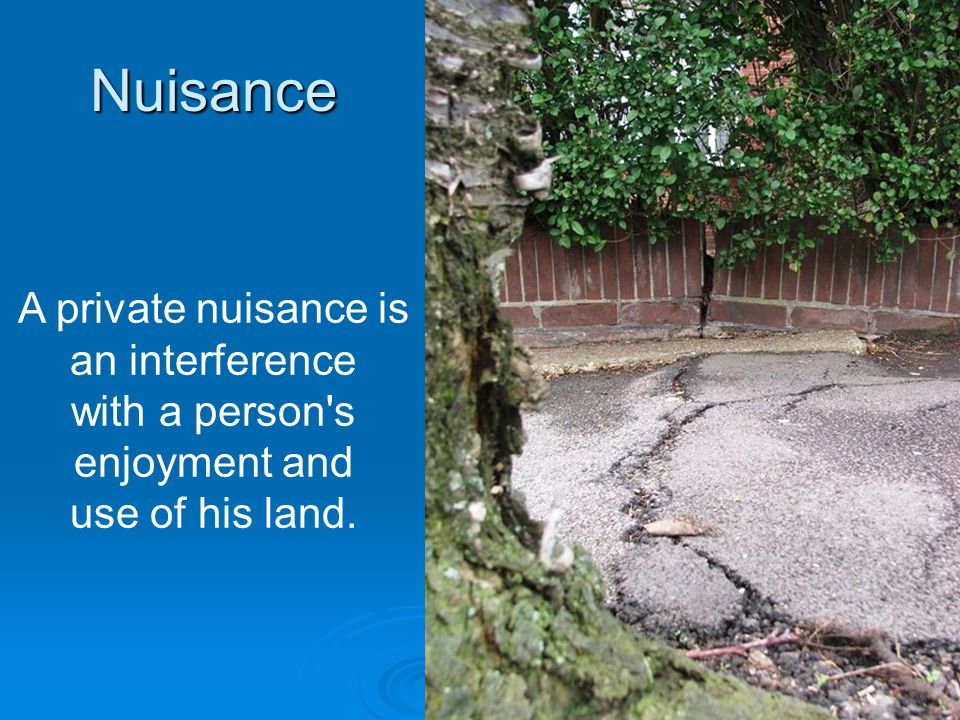 Nuisance A private nuisance is an interference