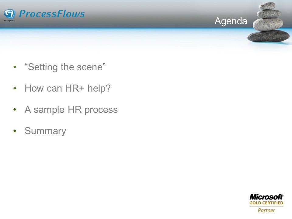 Agenda Setting the scene How can HR+ help A sample HR process Summary