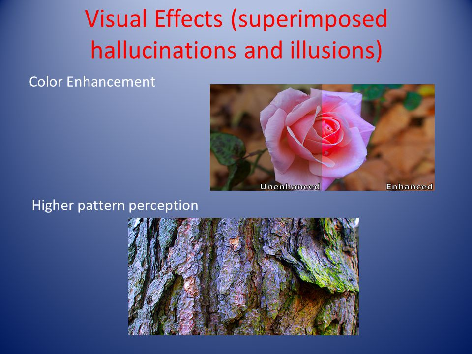 Visual Effects (superimposed hallucinations and illusions)