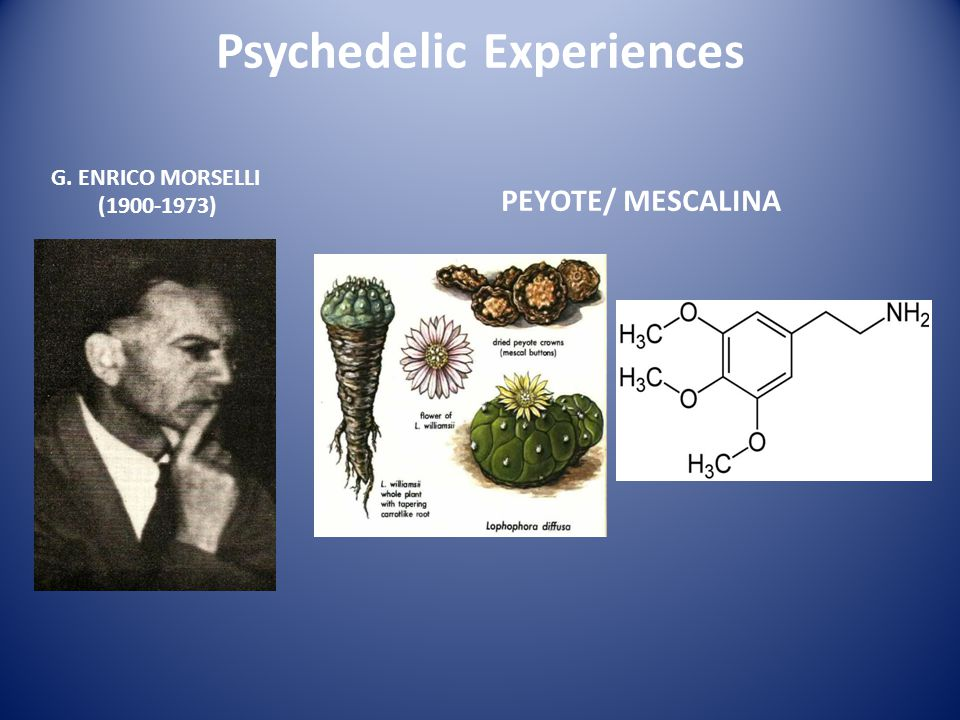 Psychedelic Experiences