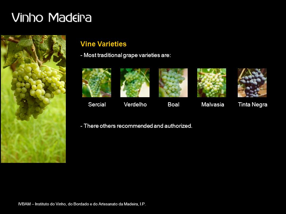 Vine Varieties - Most traditional grape varieties are: Sercial