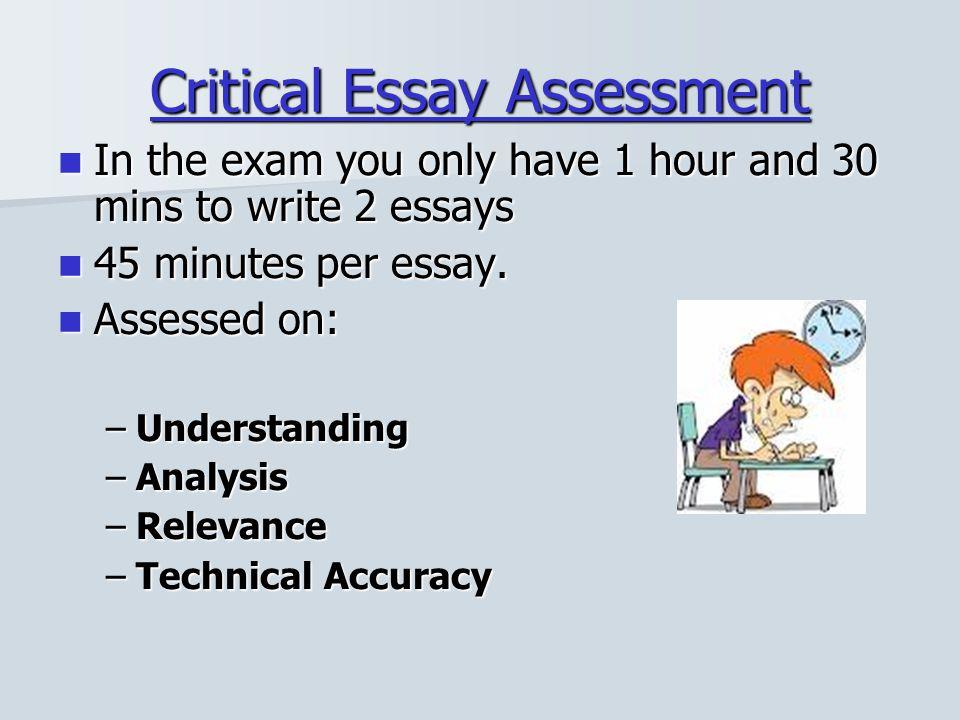 Critical Essay Assessment