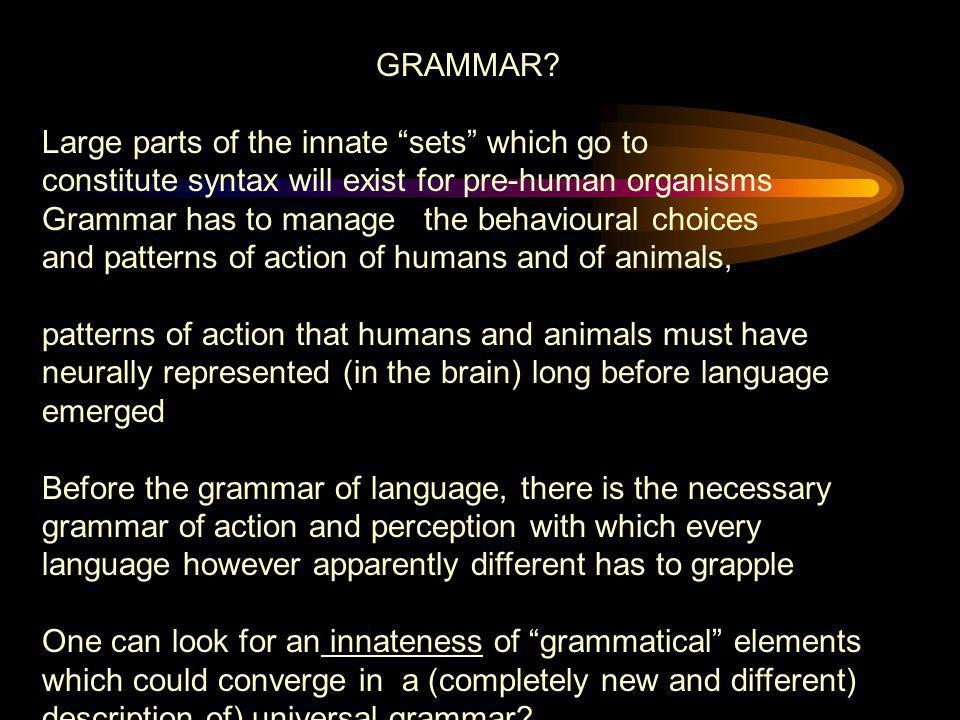 GRAMMAR Large parts of the innate sets which go to. constitute syntax will exist for pre-human organisms.