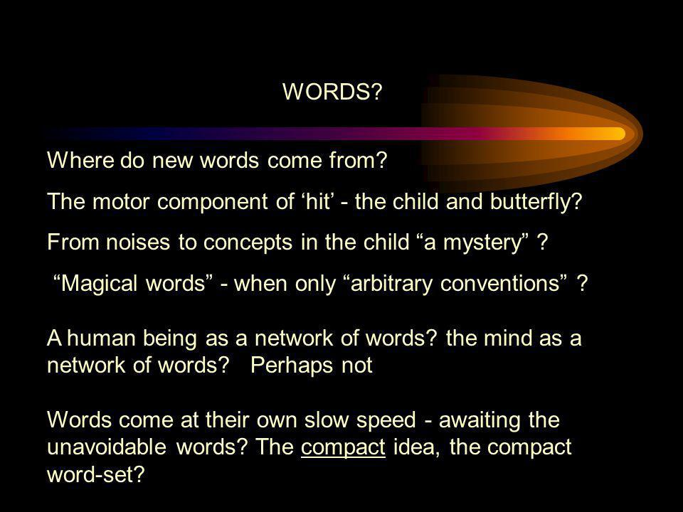 WORDS Where do new words come from The motor component of 'hit' - the child and butterfly From noises to concepts in the child a mystery