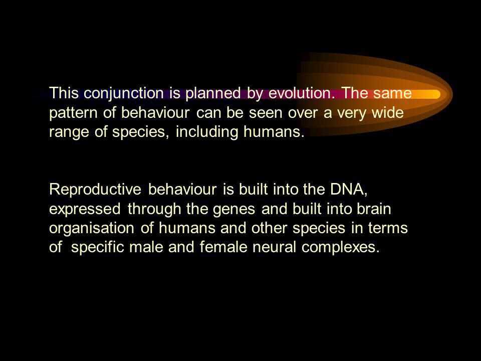 This conjunction is planned by evolution