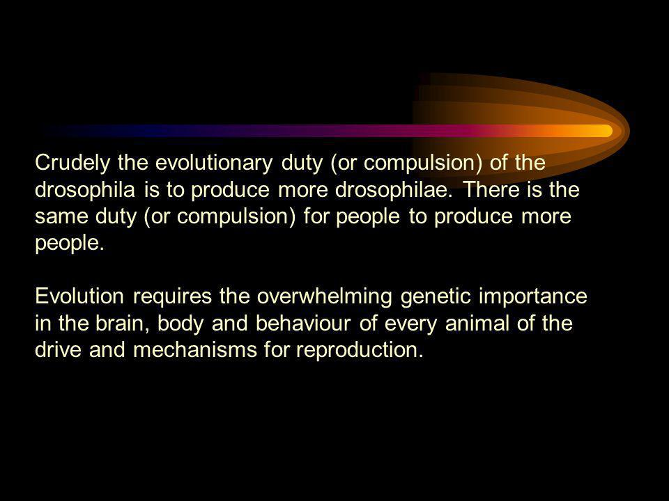 Crudely the evolutionary duty (or compulsion) of the drosophila is to produce more drosophilae. There is the same duty (or compulsion) for people to produce more people.