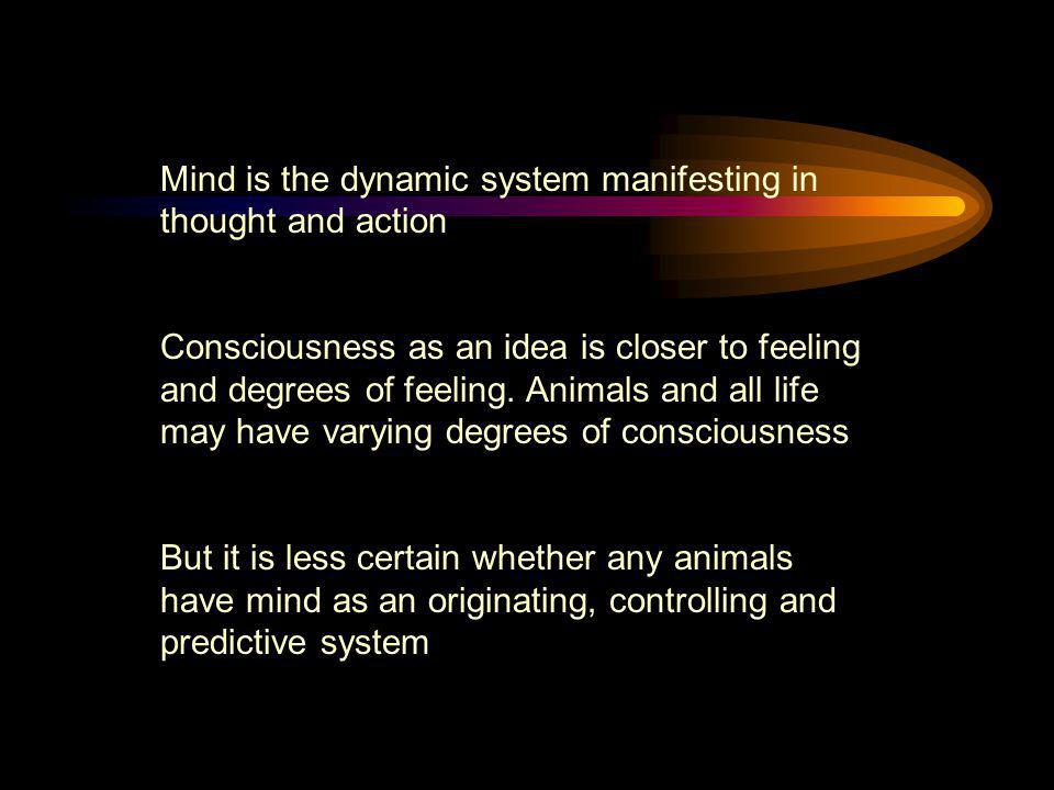 Mind is the dynamic system manifesting in thought and action