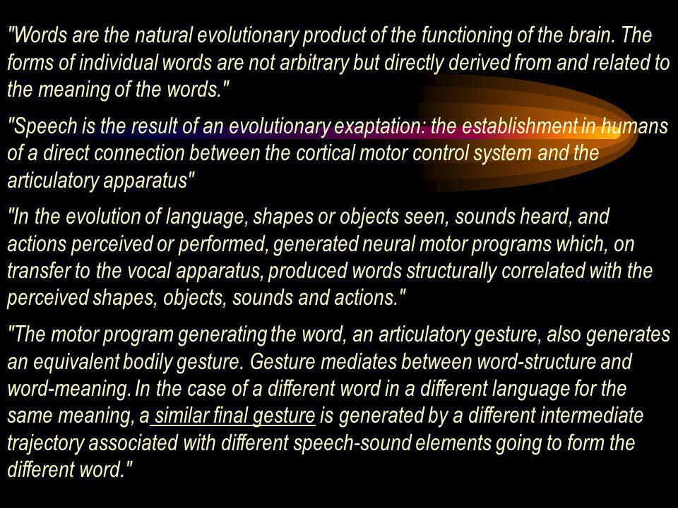 Words are the natural evolutionary product of the functioning of the brain. The forms of individual words are not arbitrary but directly derived from and related to the meaning of the words.