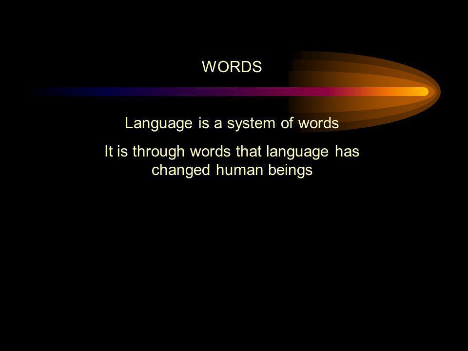 Language is a system of words
