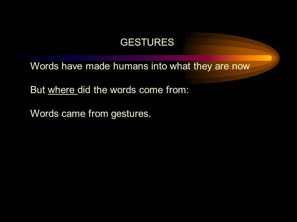 GESTURES Words have made humans into what they are now.
