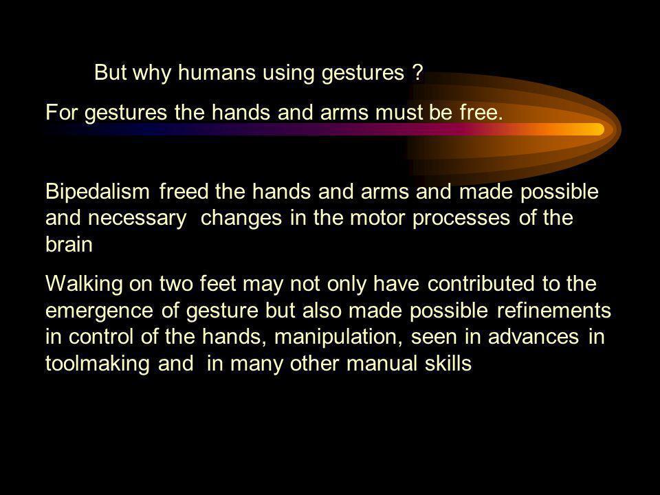 But why humans using gestures
