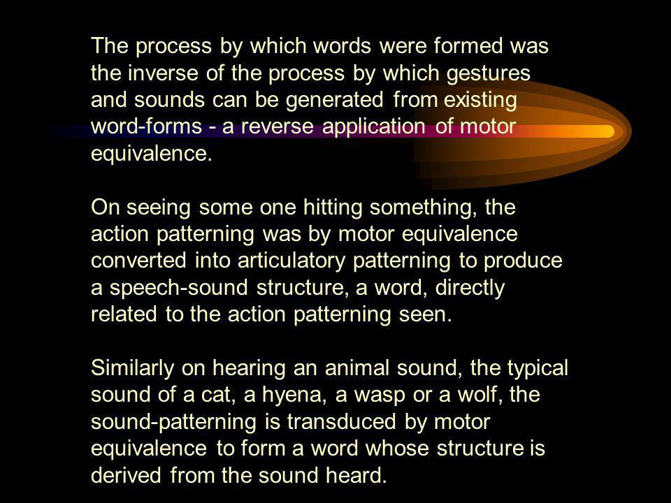 The process by which words were formed was the inverse of the process by which gestures and sounds can be generated from existing word-forms - a reverse application of motor equivalence.
