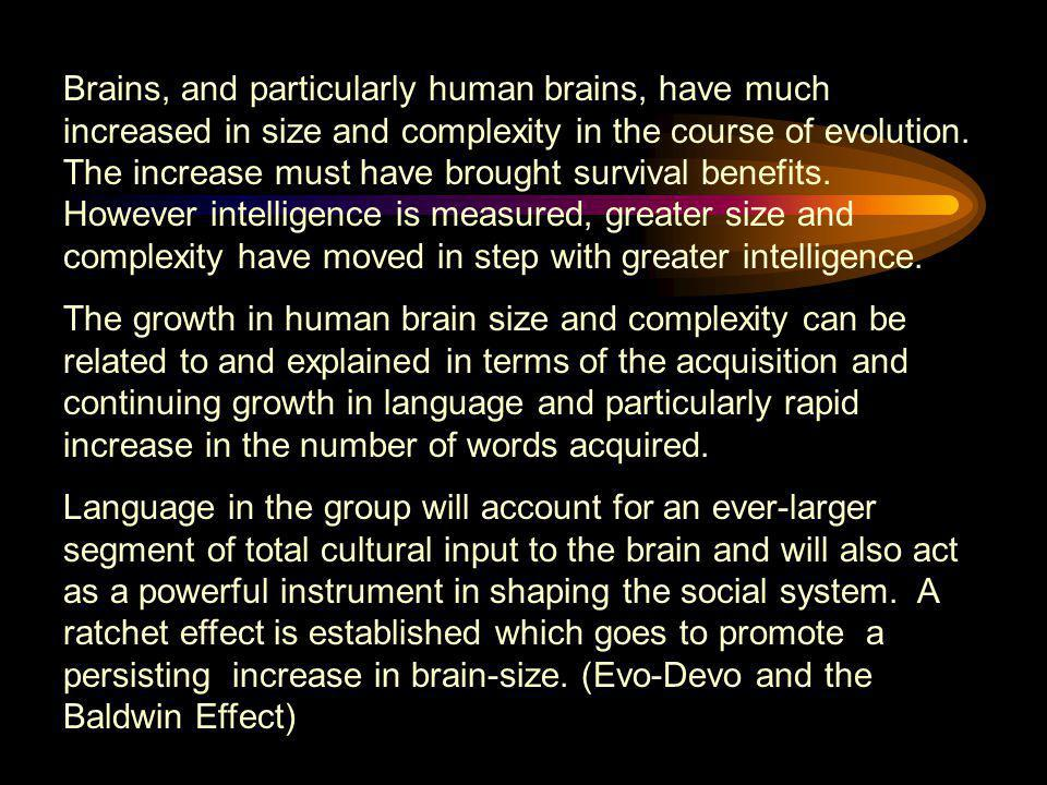 Brains, and particularly human brains, have much increased in size and complexity in the course of evolution. The increase must have brought survival benefits. However intelligence is measured, greater size and complexity have moved in step with greater intelligence.