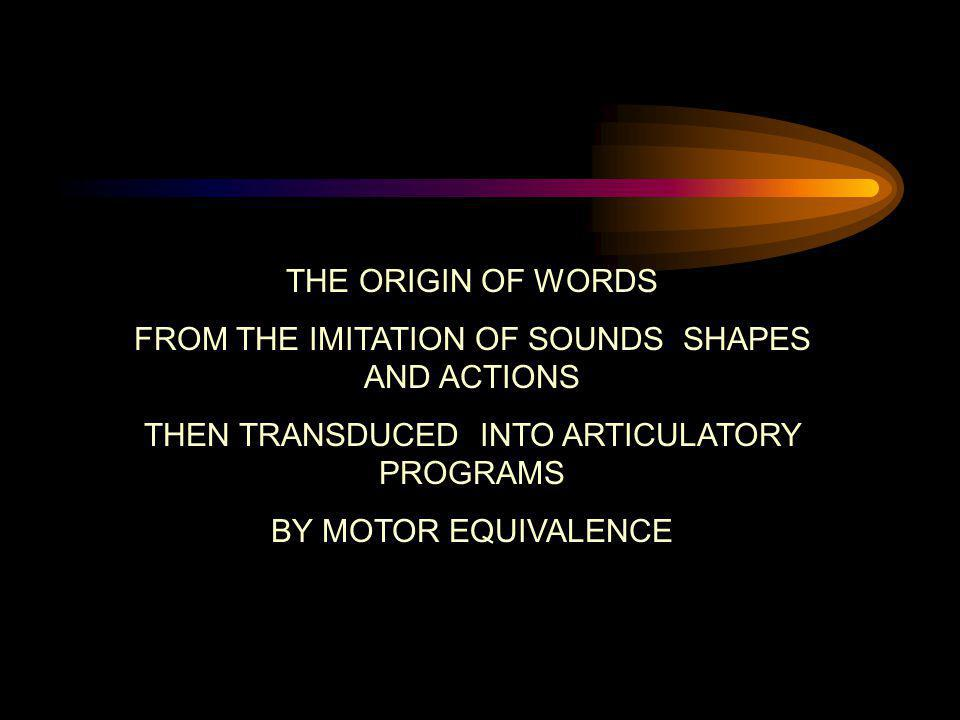 FROM THE IMITATION OF SOUNDS SHAPES AND ACTIONS