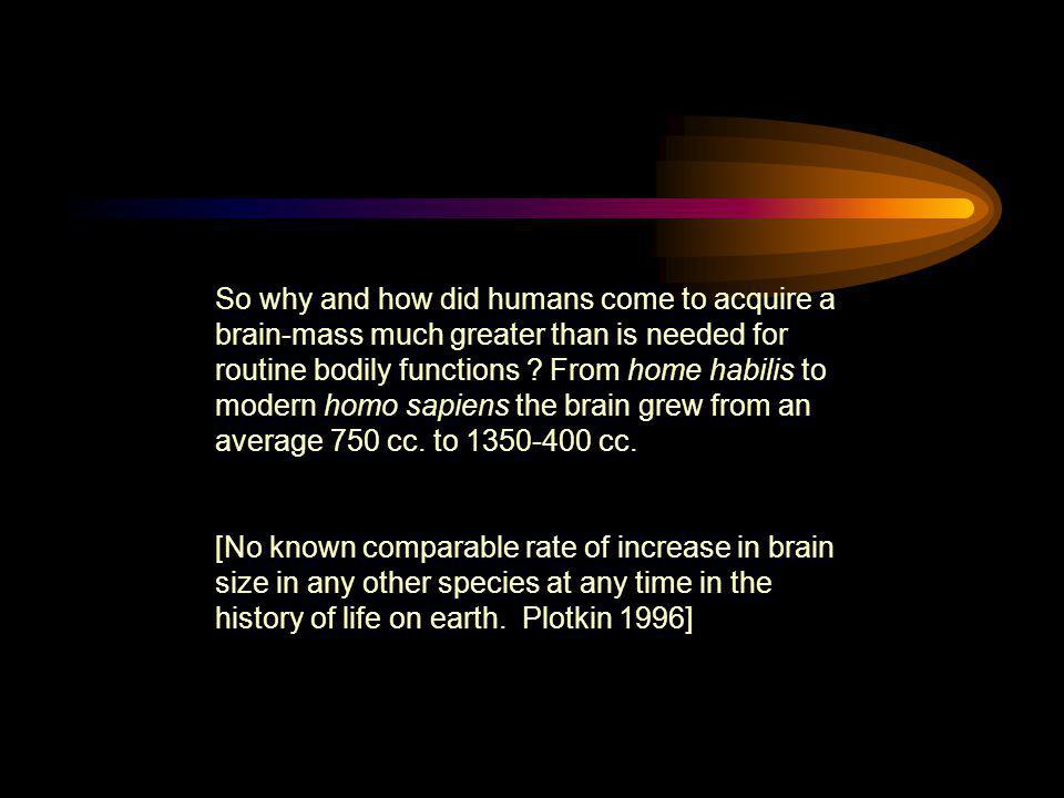 So why and how did humans come to acquire a brain-mass much greater than is needed for routine bodily functions From home habilis to modern homo sapiens the brain grew from an average 750 cc. to 1350-400 cc.