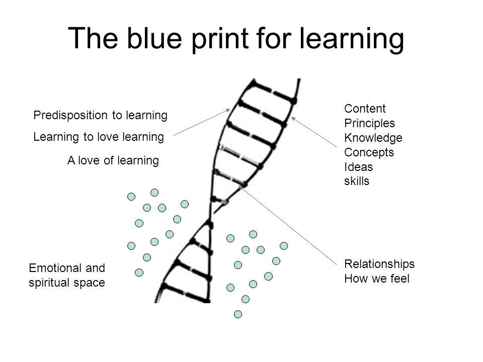 The blue print for learning