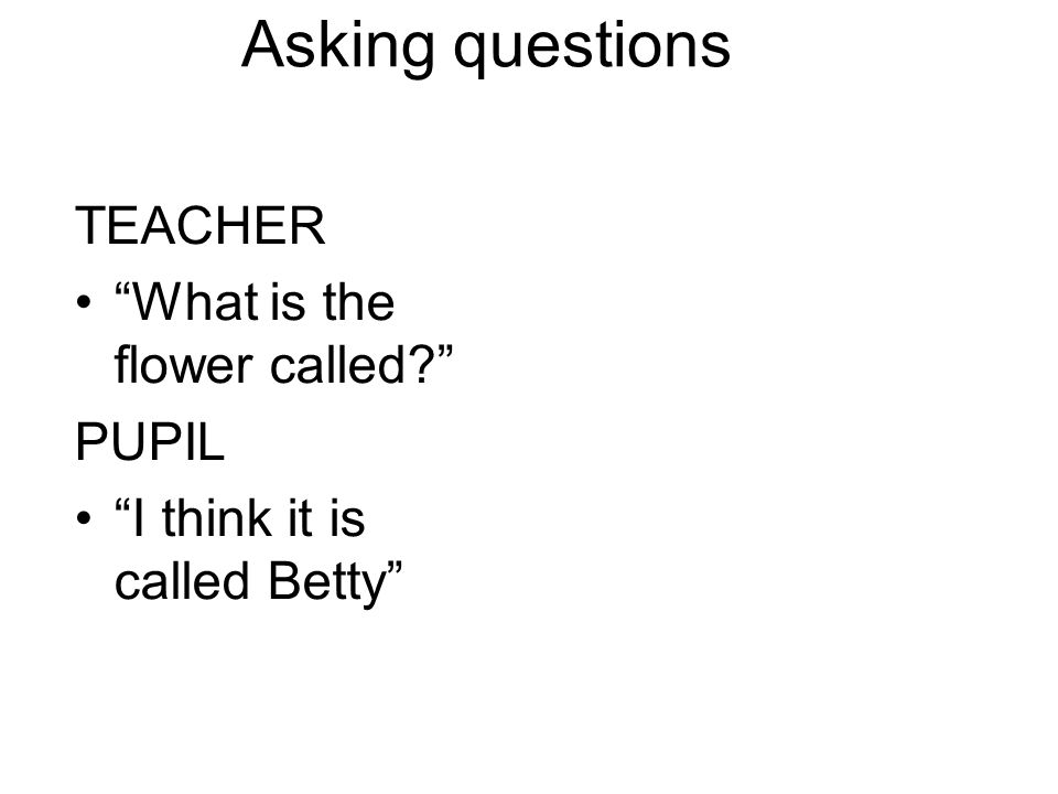 Asking questions TEACHER What is the flower called PUPIL