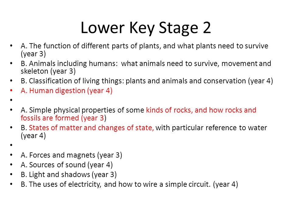 Lower Key Stage 2 A. The function of different parts of plants, and what plants need to survive (year 3)