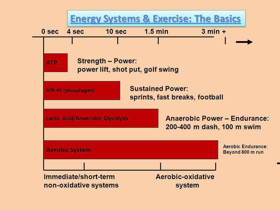 Energy Systems & Exercise: The Basics