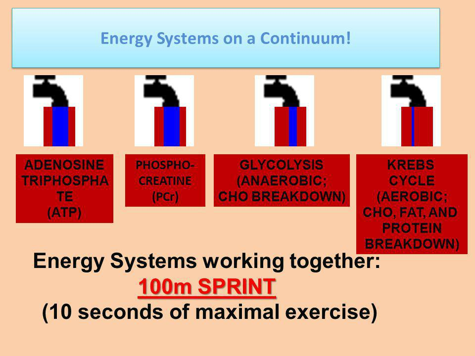 Energy Systems working together: 100m SPRINT
