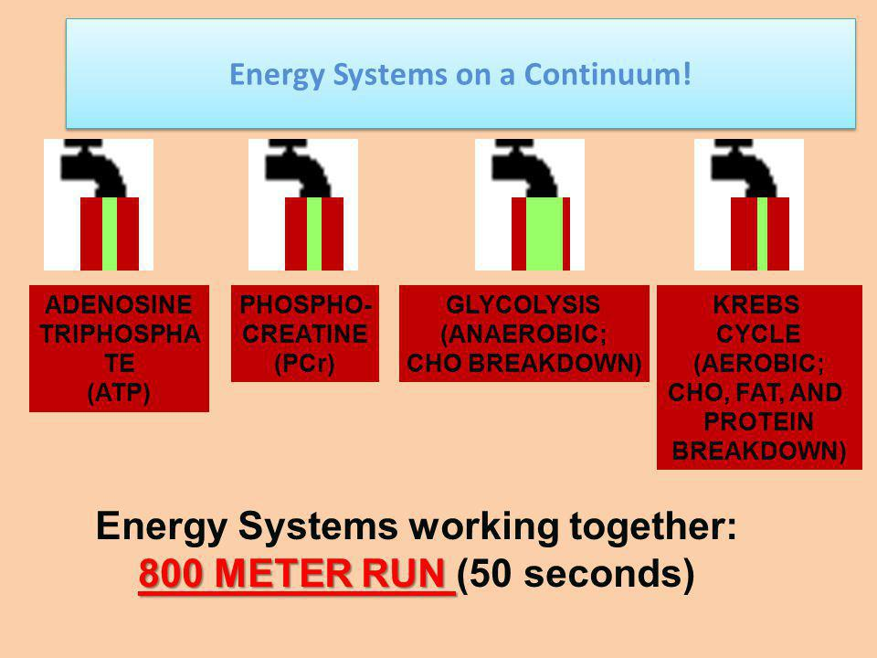 Energy Systems on a Continuum! Energy Systems working together: